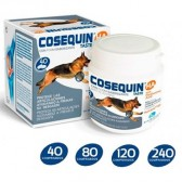 Cosequin taste condroprotector