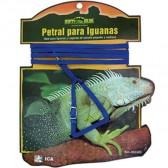 Petral cinto + iguanas