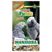 Papagaios africanos Mixtura yacos