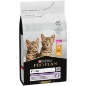 Pienso gatos Pro Plan Kitten