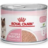 Pienso gatos Royal Canin Babycat Húmedo