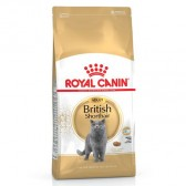 Pienso gatos Royal Canin British Shorthair
