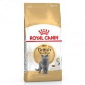 Pienso gatos Royal Canin British Shorthair