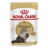Royal Canin persian húmedo