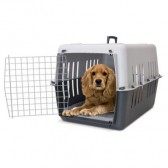 Transportadora Pet Carrier # 4