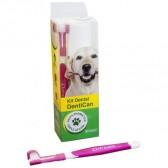 Dentican Dental Kit