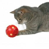 Cat activity pelota snacks Trixie