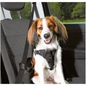 Dog arnês de segurança proteger