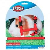 Set cobaias ajustável  liso Trixie