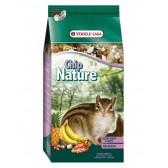 Chip nature esquilos