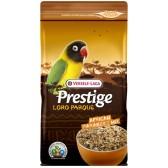 Prestige african parakeet