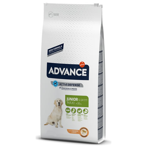 Pienso para perros Advance Maxi Junior